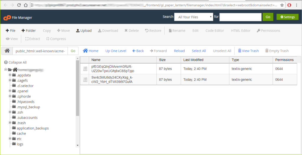 Upload the files to the appropriate location using your File Manager