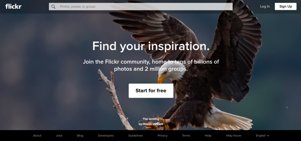 landing pages - how to build beautiful pages